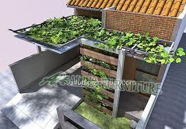 kanopi rumah minimalis dengan tanaman merambat