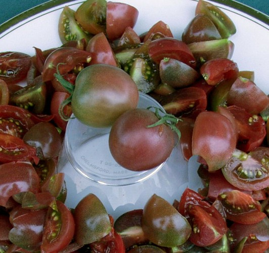 biota gardens tomatoes cherry. Black Bedroom Furniture Sets. Home Design Ideas