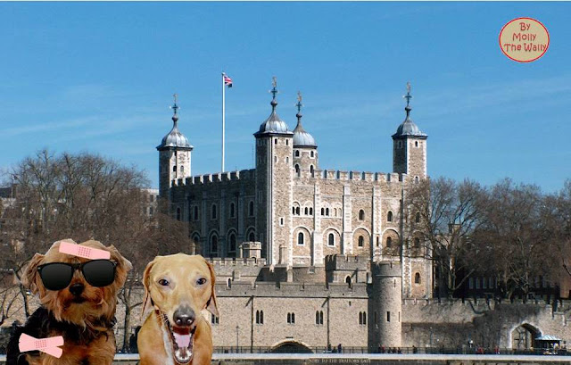 Pip & Puddles Go Large In London 12!