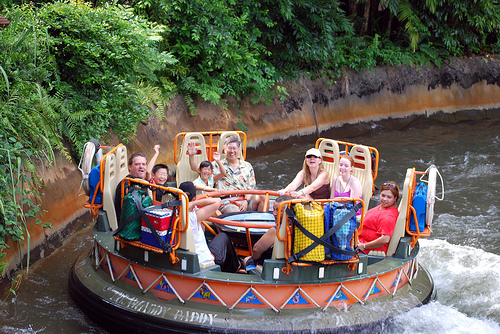 Animal Kingdom Theme Park