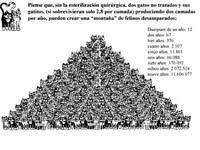 (20/11/011) CADIZ : Por los gatos, Vótanos y difunde!