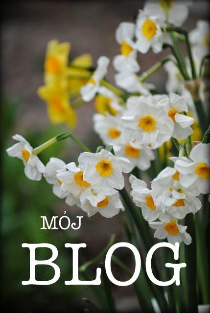 O ogrodzie i o nas więcej na BLOGU ...