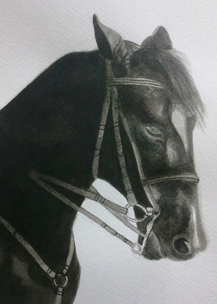 cabeza de caballo con tinta china