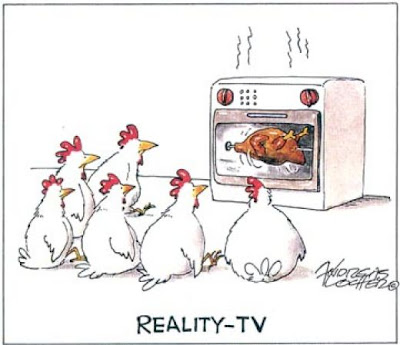 Funny Picture Chicken Reality TV