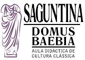 Domus Baebia
