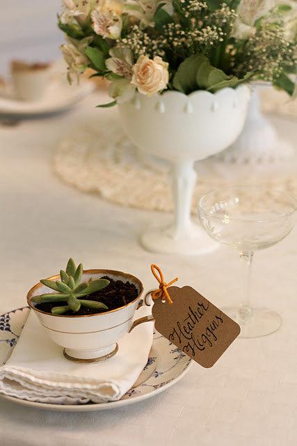 Maceta en una taza regalo de boda
