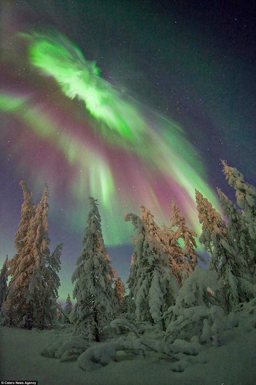 زخات الشفق القطبي