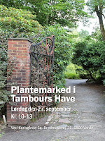 Plantemarked i Tambours Have