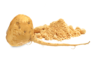 Maca%2BRoot%2BPowder.png