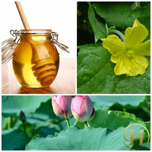 Cách chữa tàn nhang bằng mật ong hiệu quả nhất
