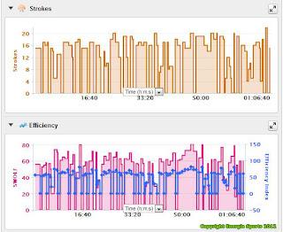 Swimming Running Training - Garmin Connect Dashboard Energia Sports