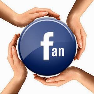 Crear pagina de fans