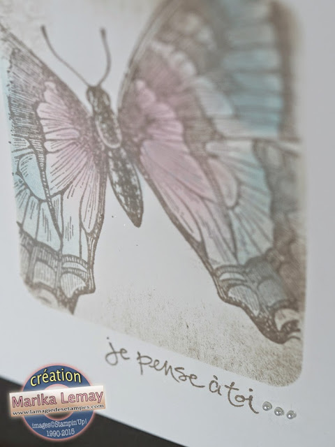 swallowtail Stampin' Up!
