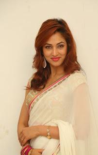 Actress Vidisha Srivastava Latest Pictures in Saree at Harinath Wedding Reception  1.jpg