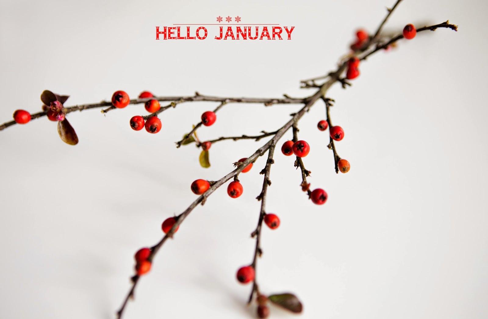 Резултат слика за hello january