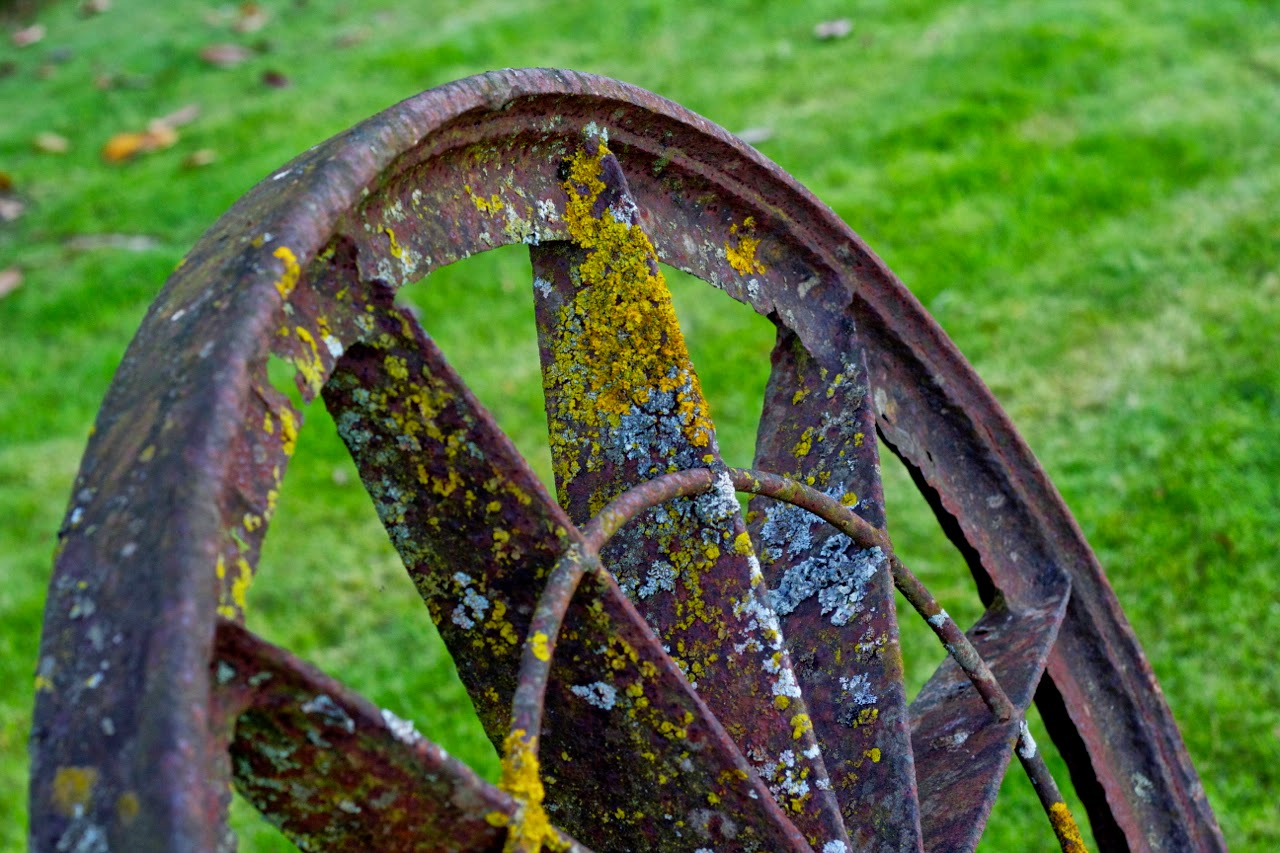 Old Antique Iron Steel Wheel by Joao Pires