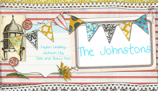 The Johnstons