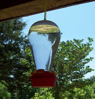 How to make food for hummingbirds