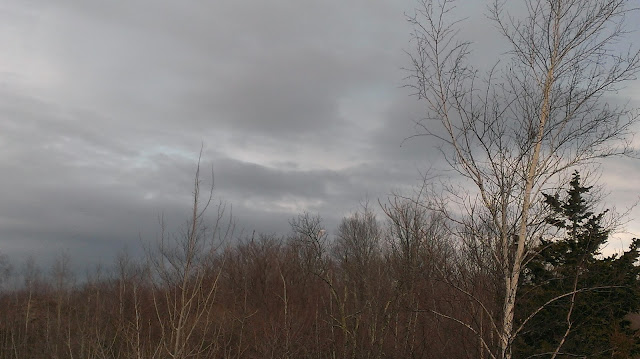 march gray skies