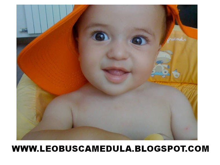 MI BLOG, NUESTRO BLOG