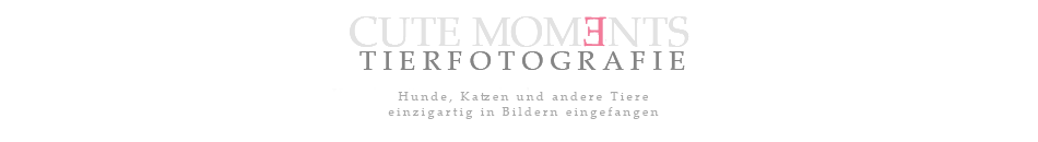 cute moments - tierfotografie