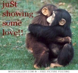http://2.bp.blogspot.com/-s4IDQpdBAsA/TgdxjLNw2PI/AAAAAAAAAJo/XgVjlsc7P8k/s400/monkey_love_on0x.jpg