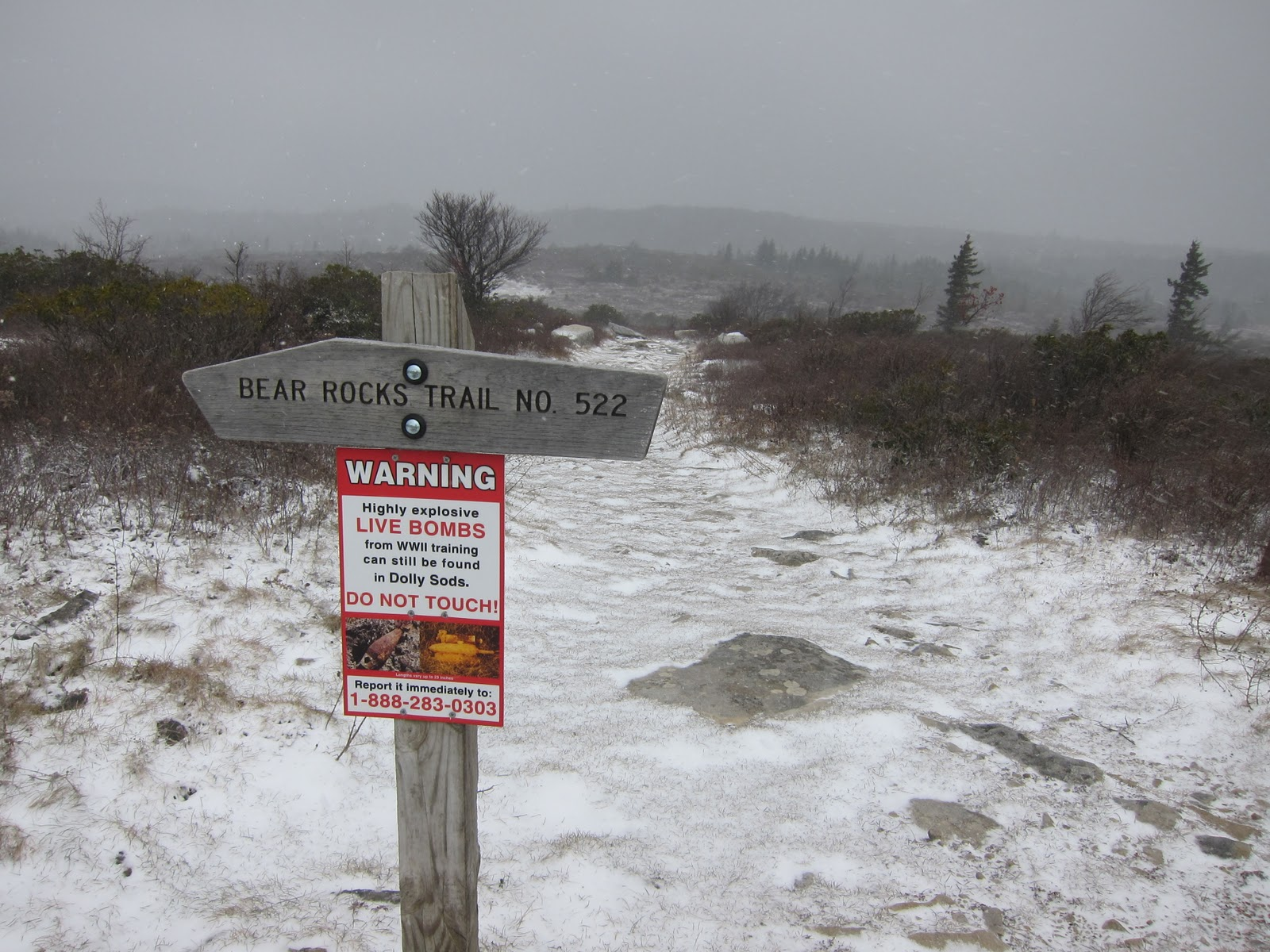 Stumbles Off the Map: Dolly Sods: Rocky Ridge Loop (Monongahela ...