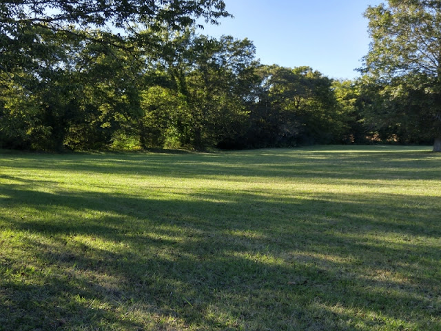 My WAHM Plan: Nature walk on our land