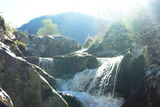 Cangas de Onís, ruta vega de Orandi, río Las Mestas