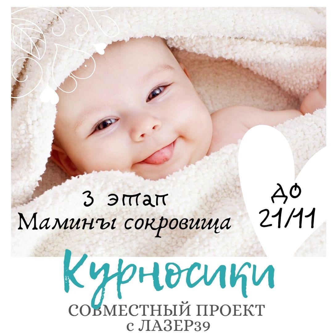 """3 этап СП """"Курносики"""""""