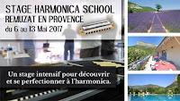 13ème STAGE D'HARMONICA MAI 2017