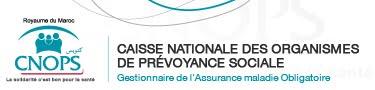 الصندوق الوطني لمنظمات الاحتياط الاجتماعي