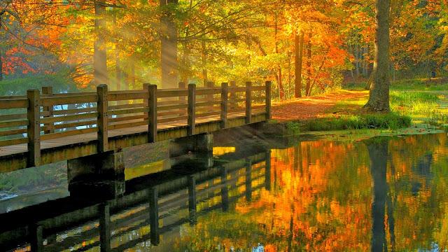 Imagen hermosos paisajes natural puente sobre el lago