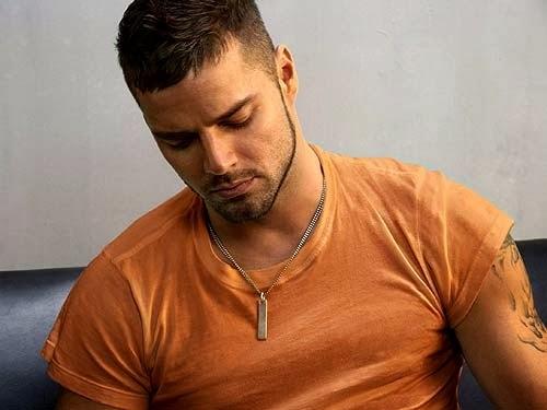 gay latino gay shorthair