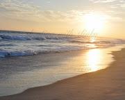 Beach SUNSETSEnjoy!