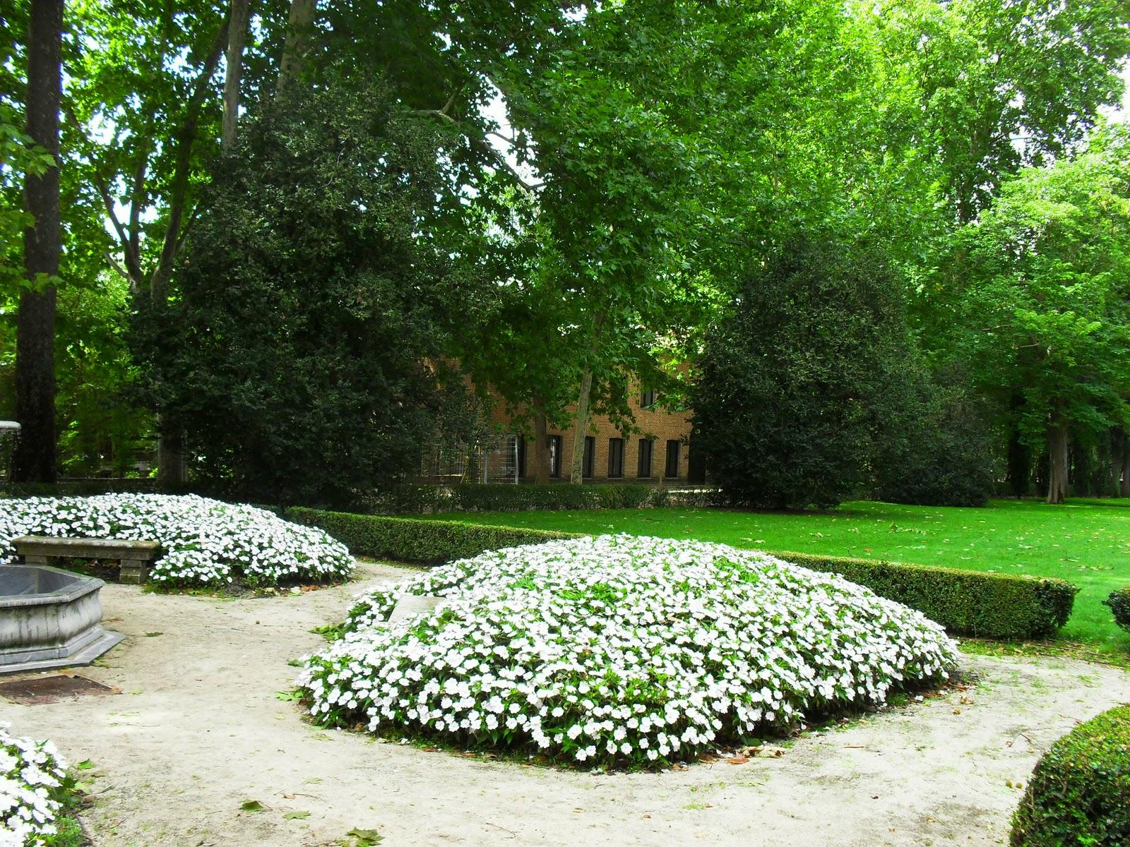 Arte y jardiner a plantas tapizantes o cubresuelos for Suelos para jardines fotos