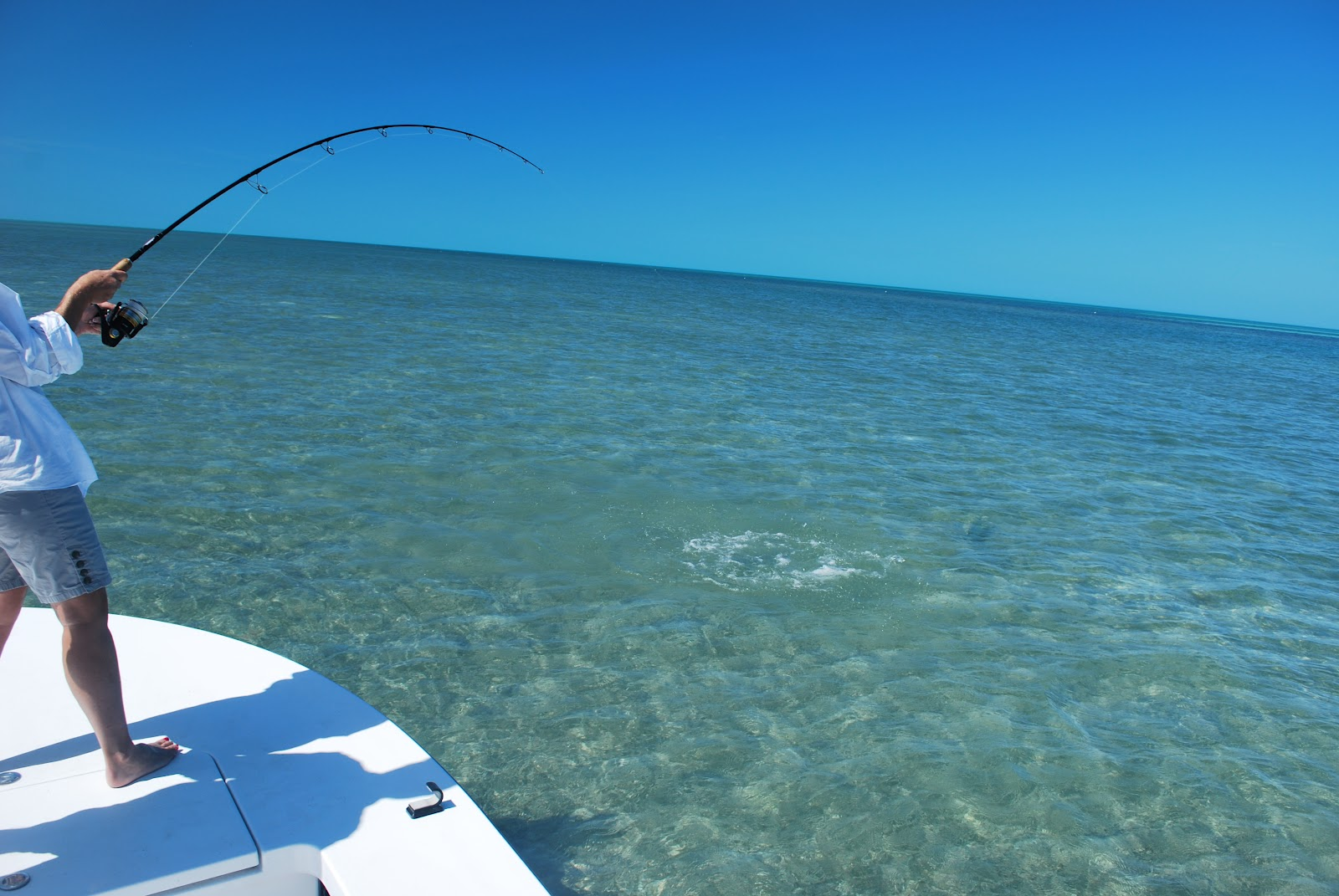 The key west flats angler permit fishing key west for Fishing in key west