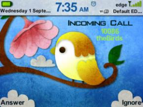 BlackBerry Theme The Birds Sudah Bisa di OS 7