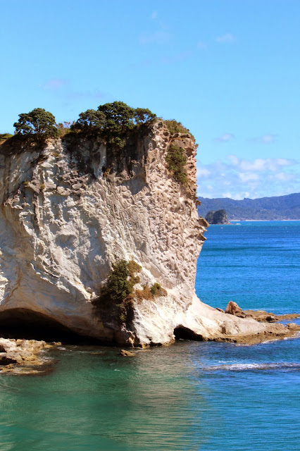 cathedral cove north island new zealand