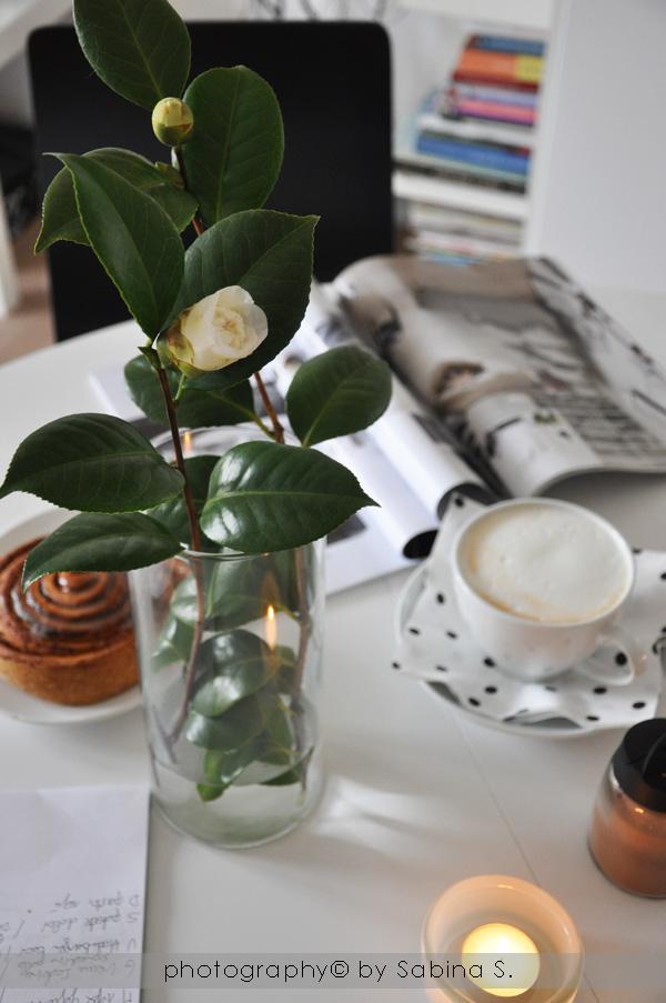 Margherite farfalle e sogni by sabina sala coccola mattutina for Ho bisogno di una casa