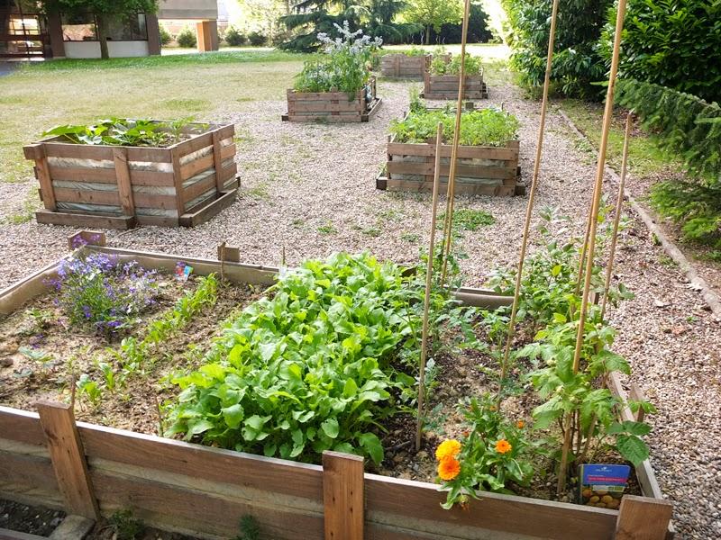 Potager en pente great comment amnager son jardin et for Jardin potager en escalier