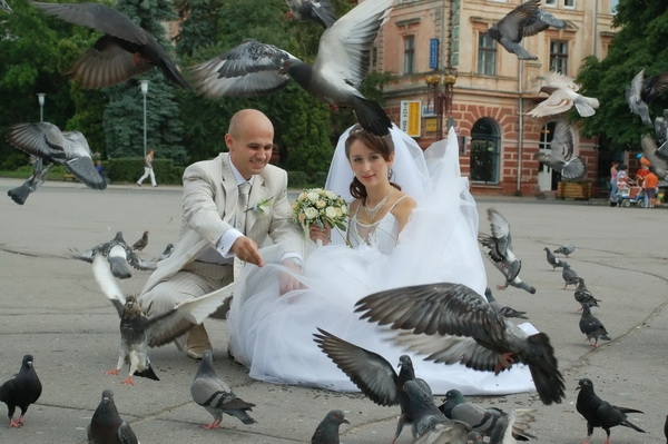 Newlyweds and Pigeons, Ternopil, Western Ukraine