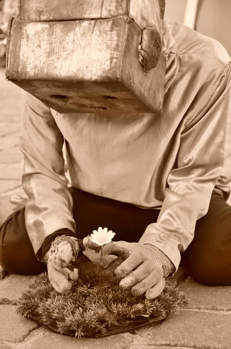 Robot nozomi sadzi kwiatka