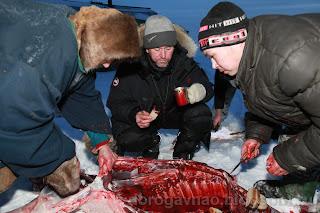 Фото не для всех. Остров Вайгач. Ненецкий автономный округ. Природа НАО.