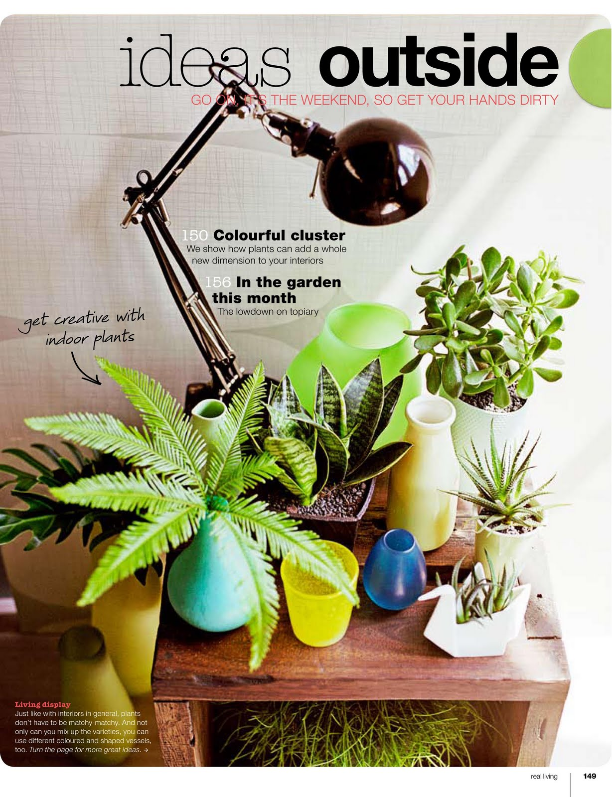 Daily Imprint Interviews On Creative Living Indoor Plants Can Be Cool