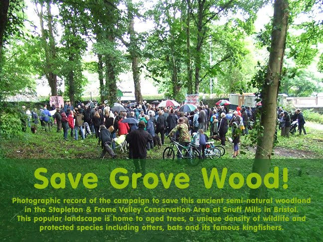 Save Grove Wood!