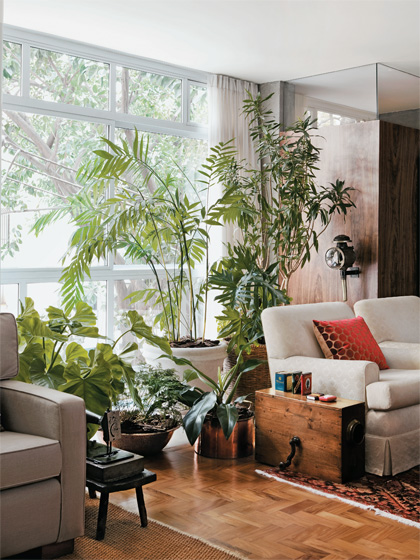 Revista casa claudia outubro aprenda cultivar jardim casa 01