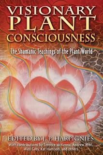 Consciousness 900309