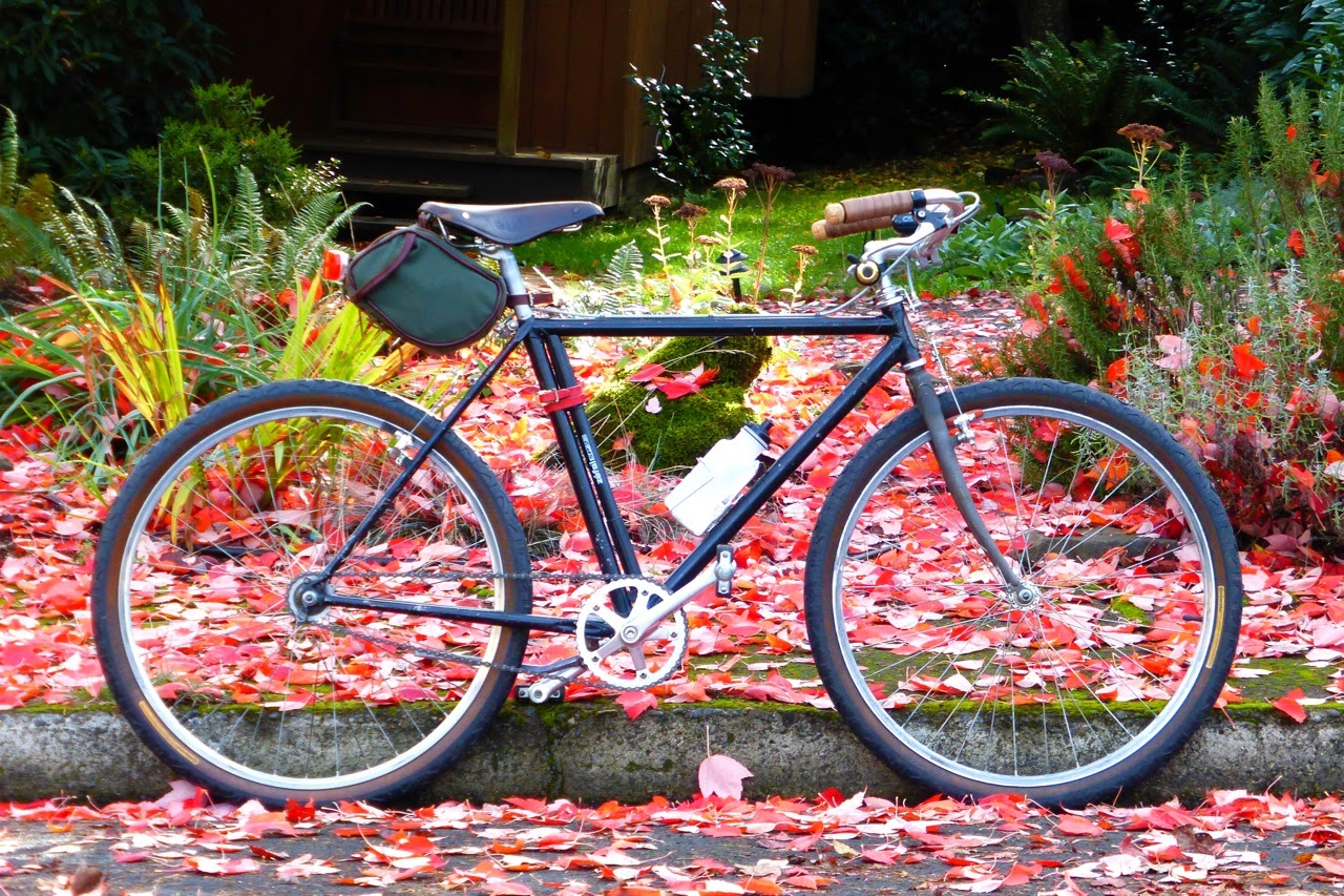 Trek 850, B-Stone, single speed, autumn, fall, Eugene, Oregon, red maple leaves