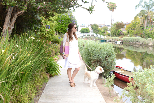 dog walking in venice canals, M Loves M